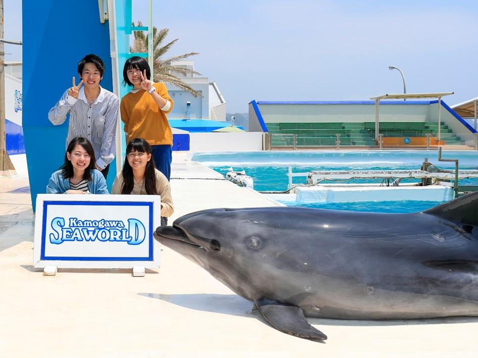 イルカと記念写真は良い思い出になりますね♪