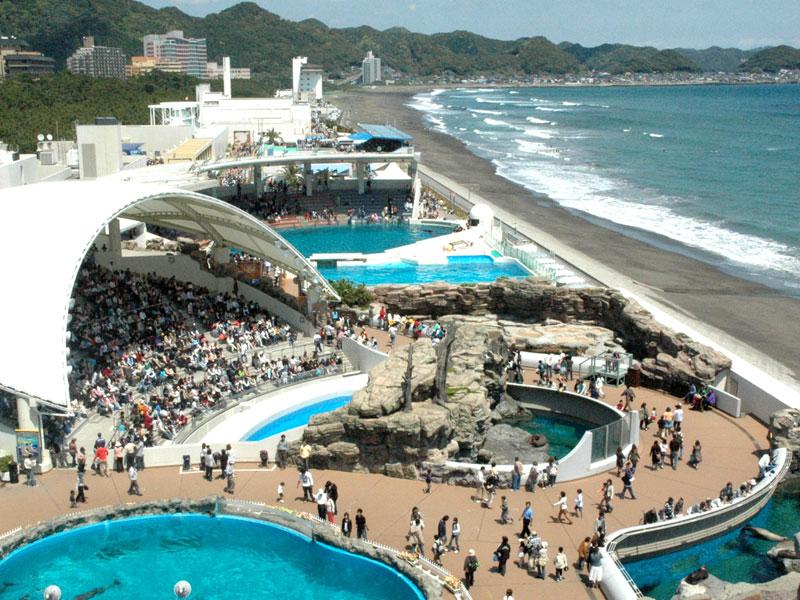 Planning List - Kamogawa Seaworld Hotel - Online R
