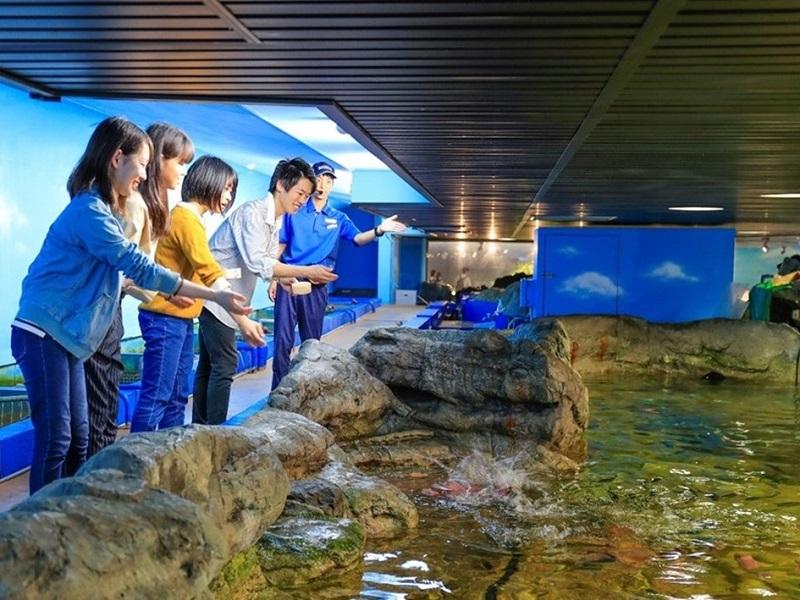 エコ・アクアロームにて魚たちのお食事タイムのお手伝い!
