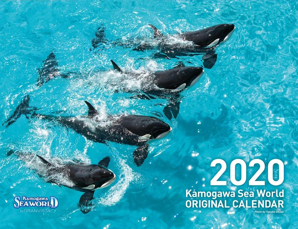 2020年も鴨川シーワールドの海の生き物たちと一緒に過ごそう!