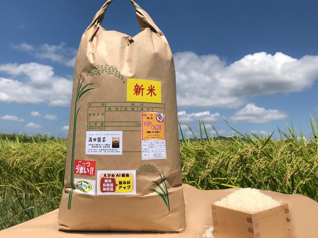 新米10キロ 長狭米