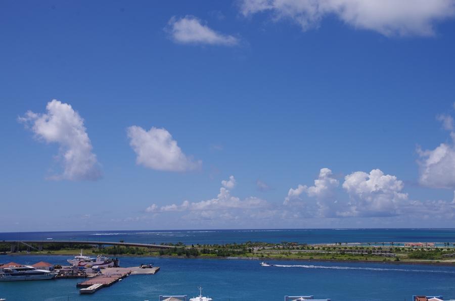 スーペリアオーシャンビュールームの眺め