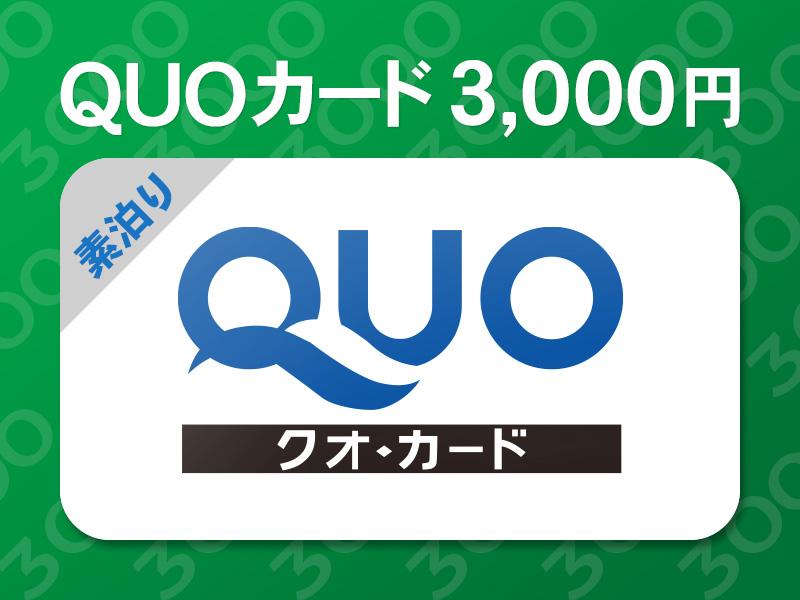 3,000円QUOカードプラン(イメージ)