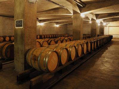 サドヤ醸造場 地下貯蔵庫