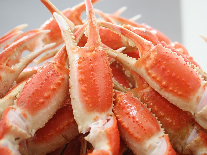 ずわい蟹(半肩)付 イメージ