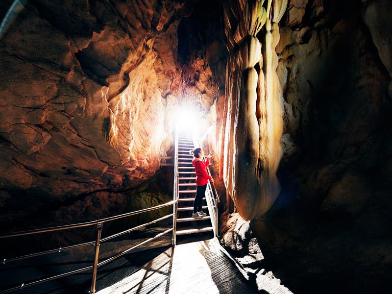 龍河洞「光と雪の物語」