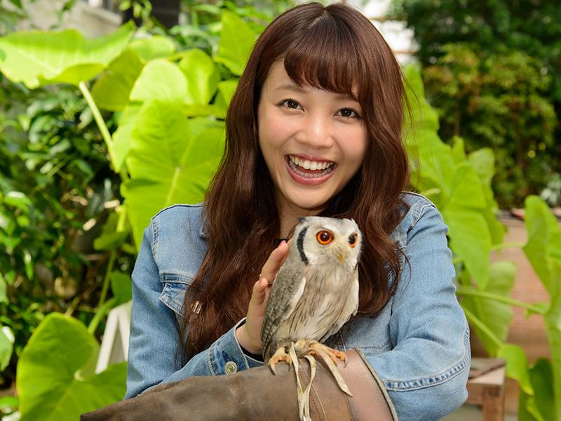 掛川花鳥園 フクロウを乗せてみよう
