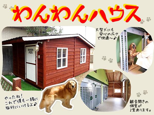 冷暖房完備の「わんわんハウス」好評いただいてます♪