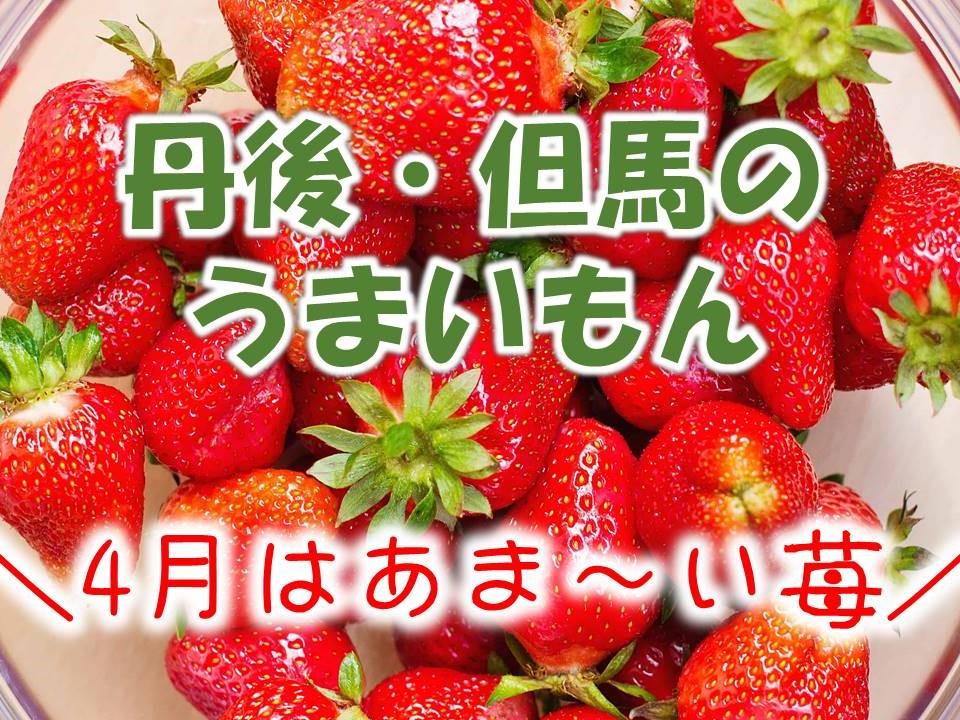 うまいもんお土産付き!春はあま〜い苺をプレゼント!