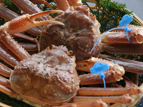 津居山蟹付カニフルコース