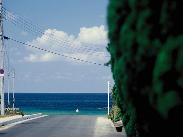 海までは徒歩約30秒!潮騒と潮風を感じながらお散歩もオススメ