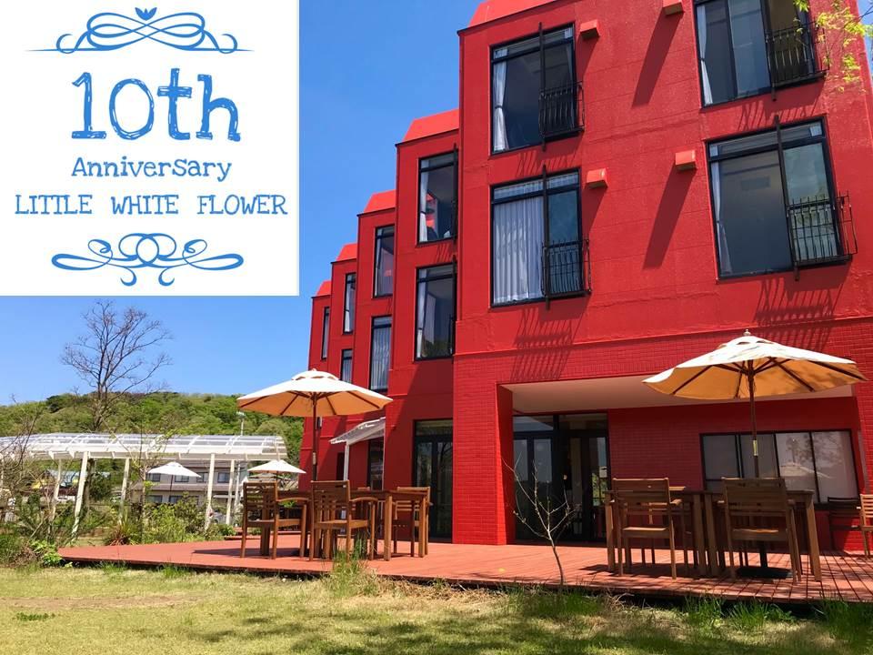 白い花10周年特別プラン