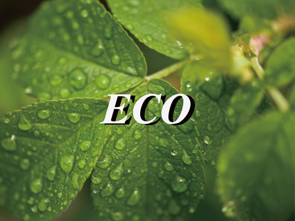 エコ清掃プラン