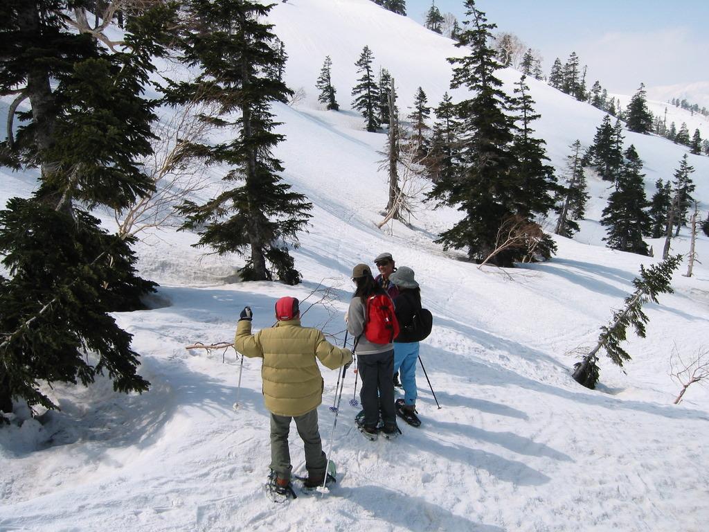 雪の高原を歩きます