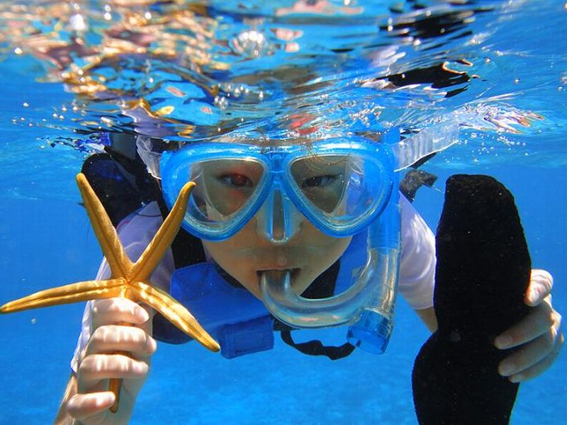 透明な海に囲まれた水納島で海の生物と触れ合う♪