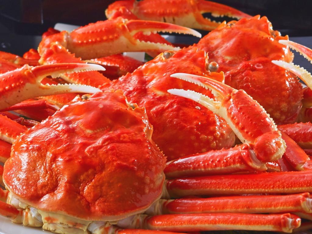 城崎のカニシーズンをお腹いっぱいお楽しみください