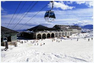 パルコール嬬恋スキー場        関東最長のゴンドラ!50分(22km)   最長4.5kmのロングクルーズ!