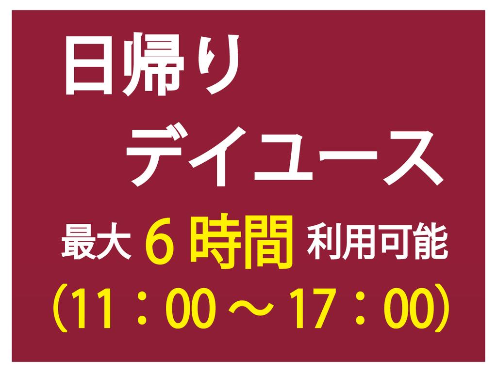 ★日帰りデイユース★【最大6時間利用可能♪】11:00チェックイン&チェックアウト17:00まで!!