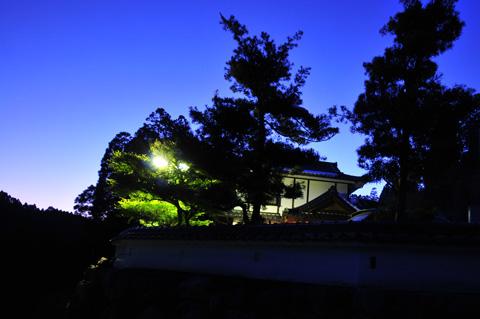 阿蘇の奥座敷。自然に囲まれた静寂で、今宵贅沢なひとときをお過ごし下さい。