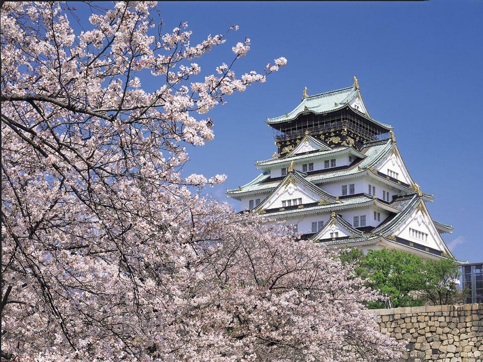 桜の名所「大阪城公園」