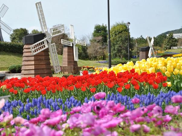 国営明石海峡公園 春の風景