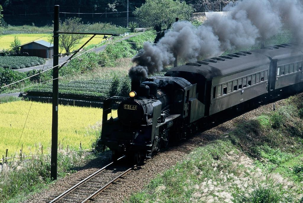 ファミリーに大人気★御大井川鉄道-SL-