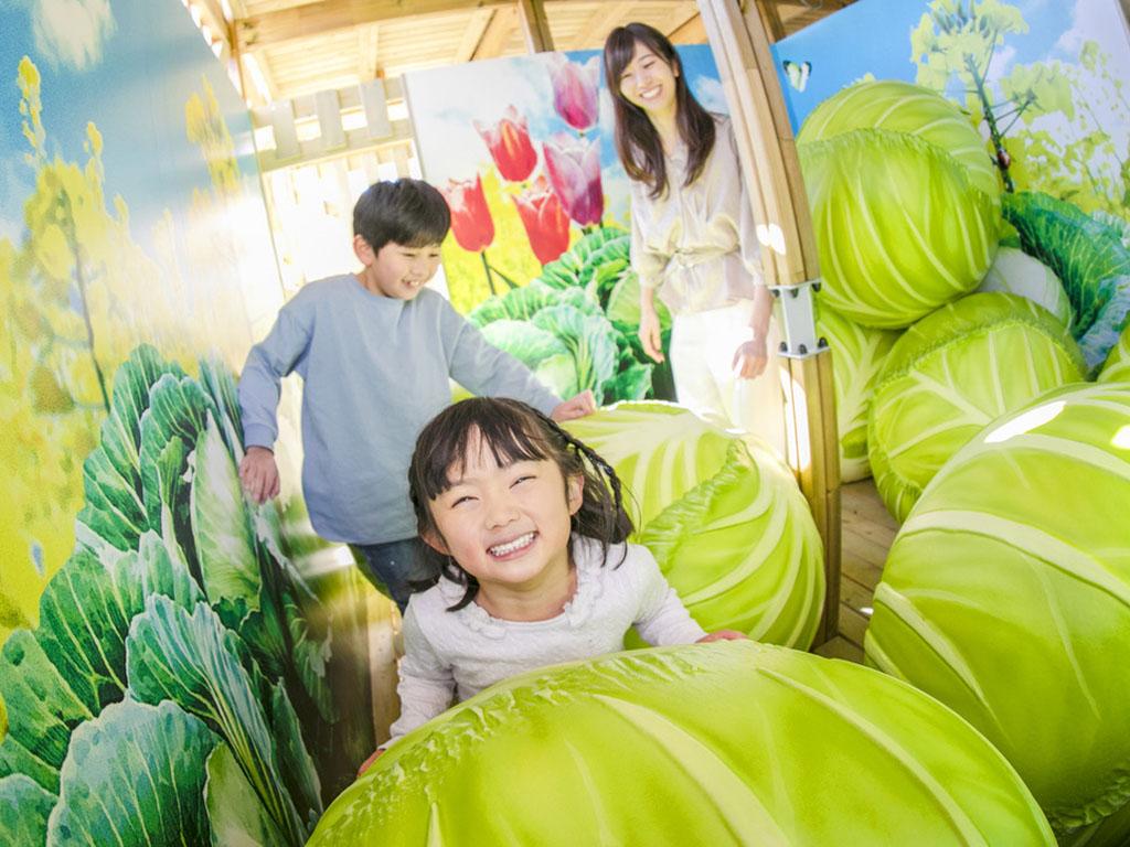 大きな野菜や果物をのりこえたり、いっぱいからだを動かしたりしてゴールを目指そう!【ポタジェンヌ】
