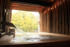 大人一人がゆったり入れる大きさの総檜の露天風呂