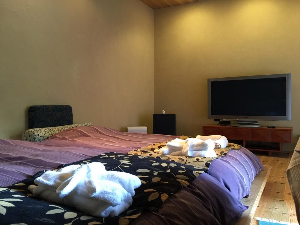 パナソニック  ビエラ  55型 大画面TV設置の寝室