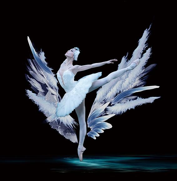 新国立劇場バレエ団 「白鳥の湖」