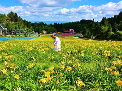 六甲山カンツリーハウス(イメージ)
