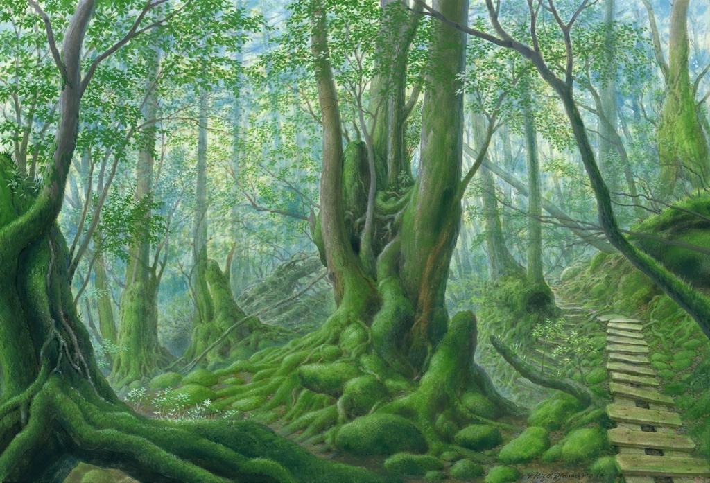 森と水を巡るいのちの旅