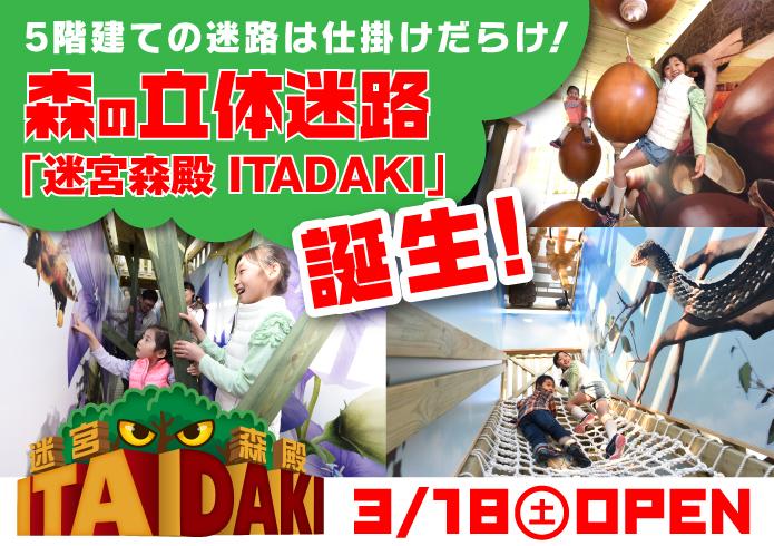 迷宮森殿 ITADAKI(イメージ)
