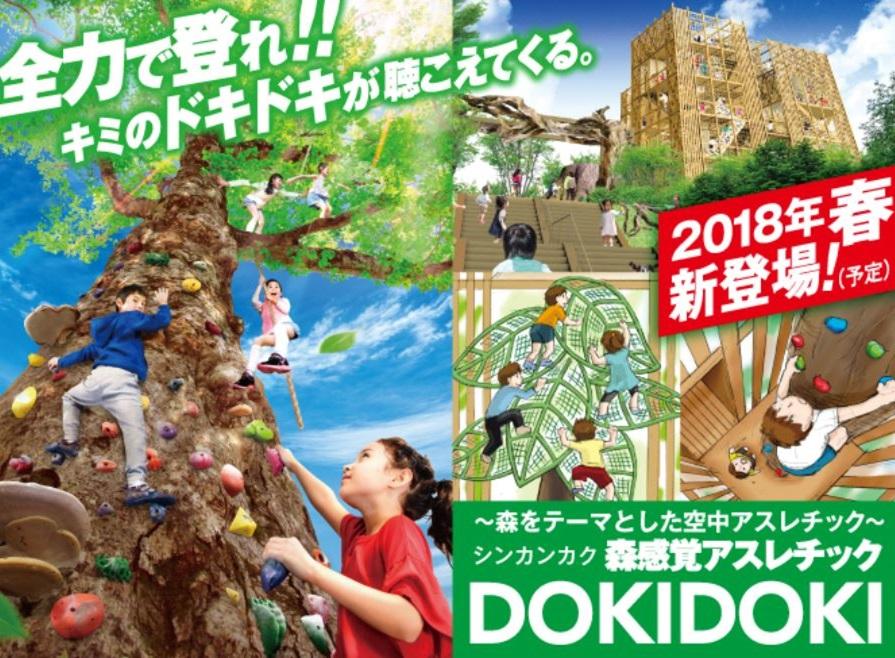 今春OPEN!森感覚アスレチックDOKIDOKIを楽しもう!!