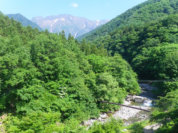 名山「谷川岳」が魅せる四季の美しさ 〜夏〜