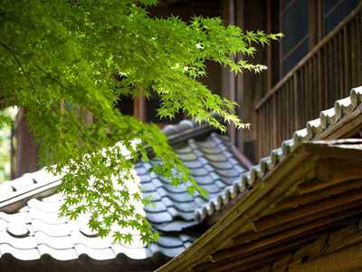 Japanese Architecture