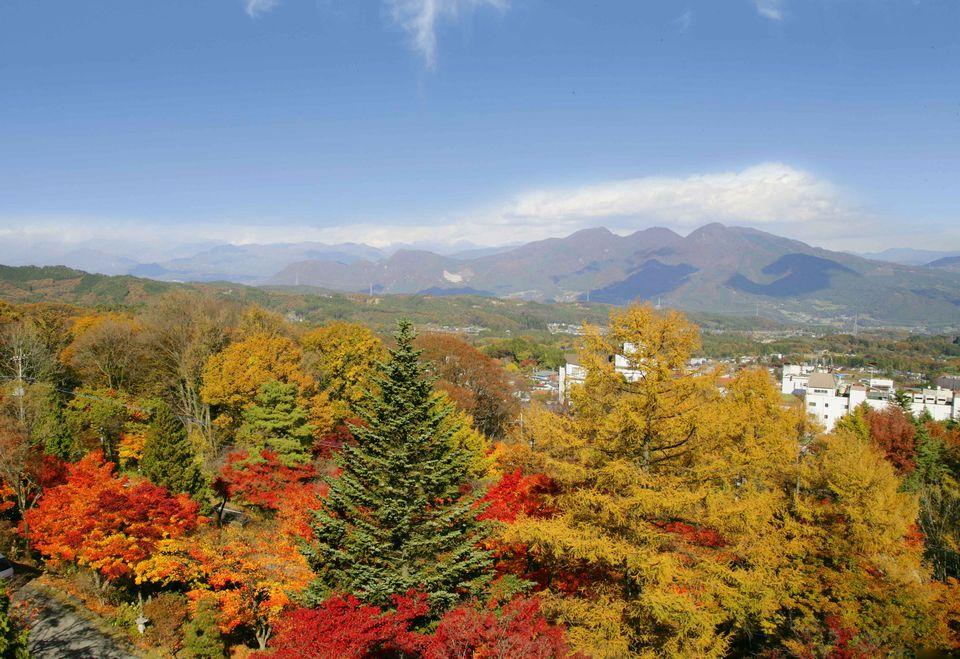 紅葉を見下ろす眺望