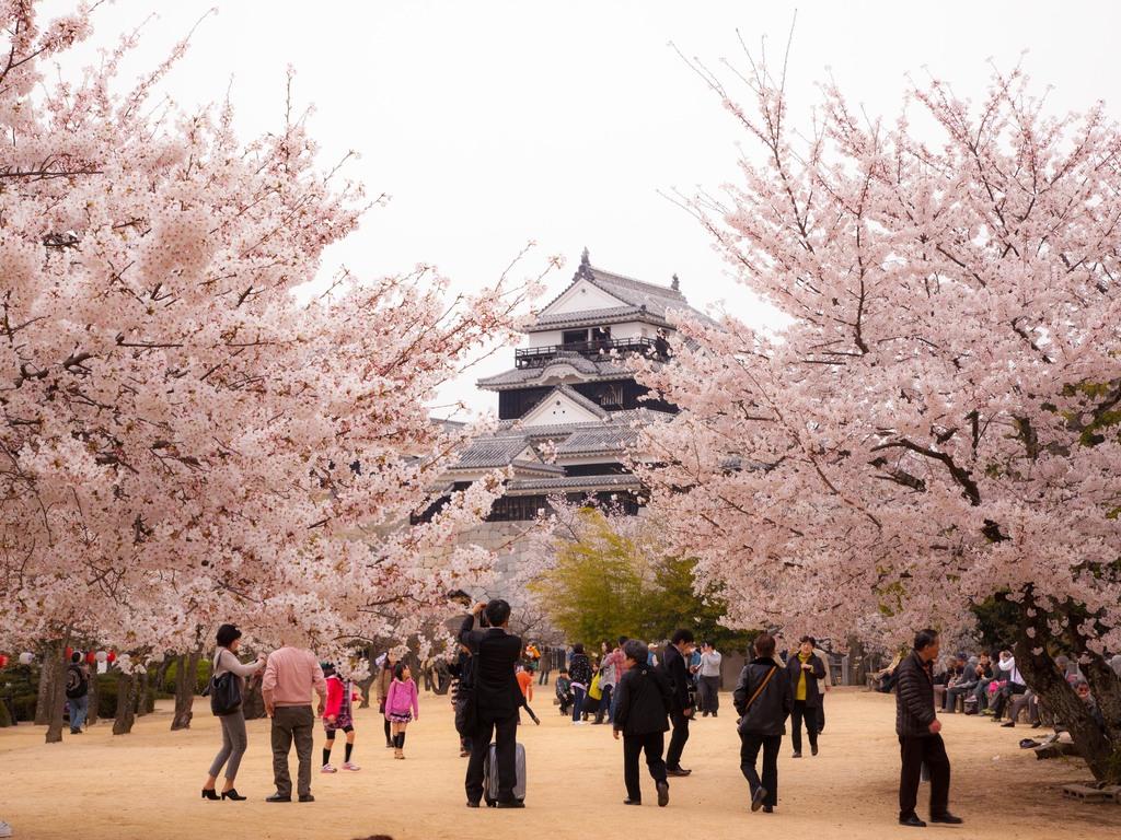 春・松山城