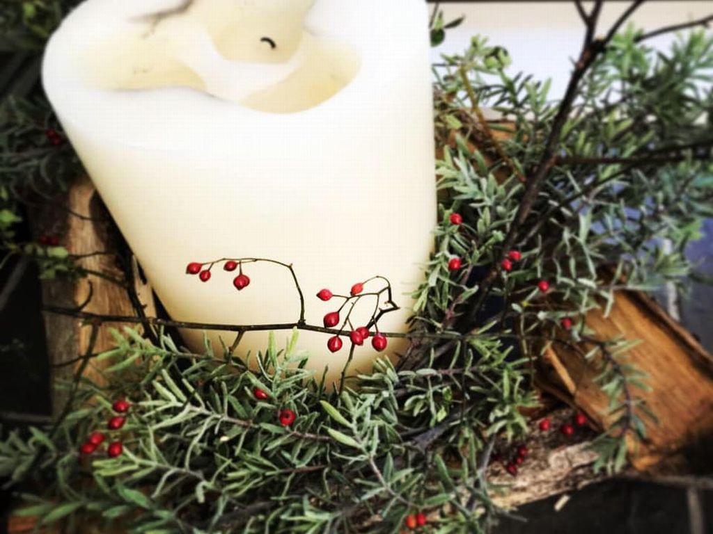 クリスマスはアートビオトープ那須へ