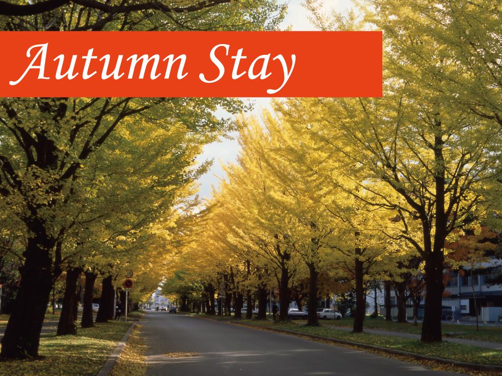 9月から11月限定の宿泊プラン