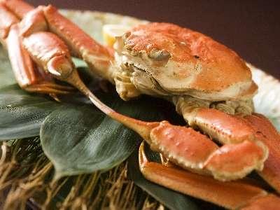 山陰の冬の味覚の王様・ずわい蟹!