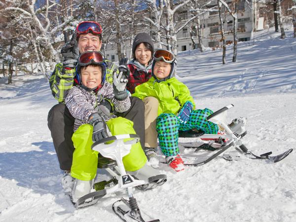 スノーレーサーキング 〜ポタスノ—ランド〜