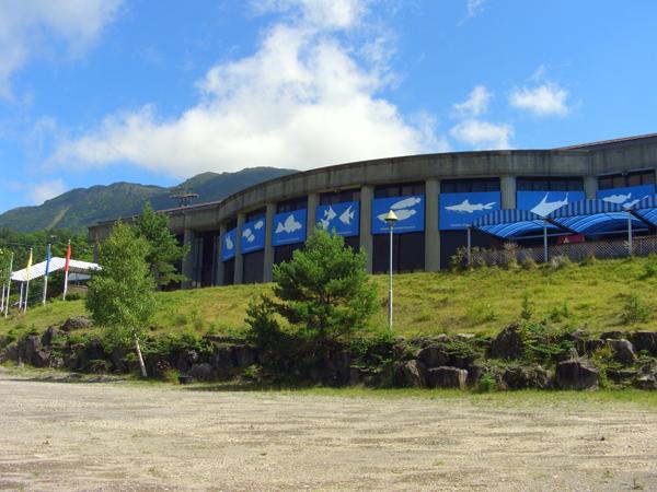 蓼科アミューズメント水族館〜標高1750mの天空水族館