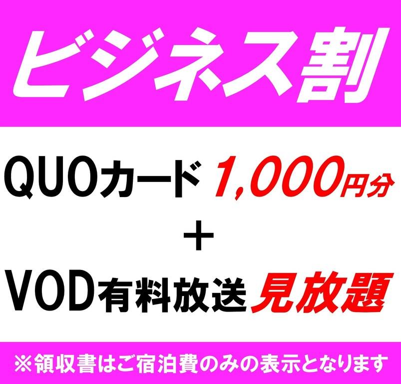 【ビジネスプラン】Quoカード1000円&VOD見放題