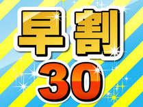 500_500_hayawari30.jpg
