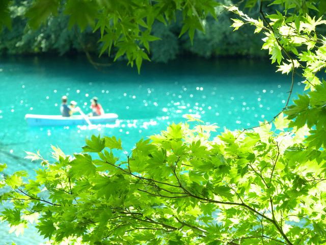 陽射しをうけたコバルトブルーが美しい五色沼【毘沙門沼】