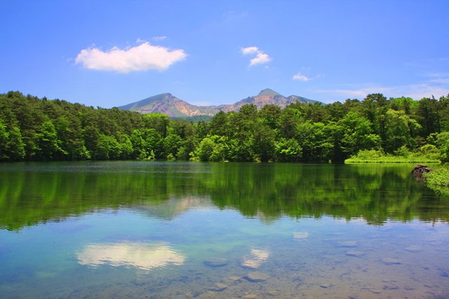 新緑が瑞々しい弥六沼越しの磐梯山