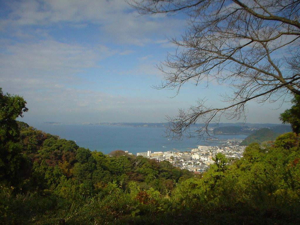 周辺 仙元山