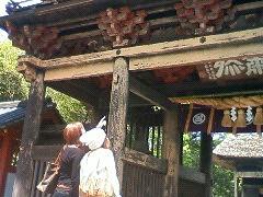 人吉球磨観光 青井阿蘇神社