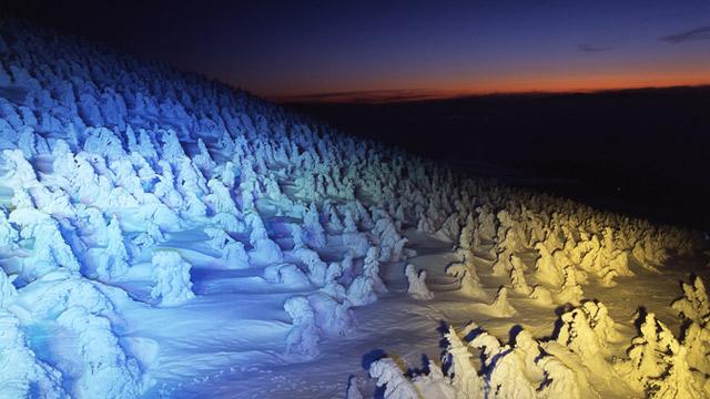 樹氷ライトアップは1月〜2月に実施中